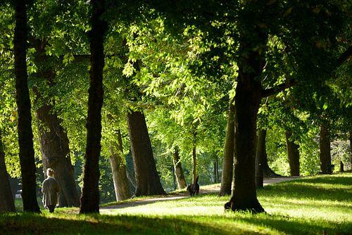 Zocherpark in Utrecht er hoogte van Maliesingel van