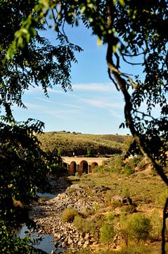 Bridge von Sabrina Varao Carreiro