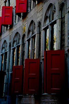 Stadshelden van Utrecht, Stadsheld 30 van Simone Leenders