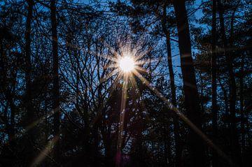 Zonnestralen van Onno van Kuik