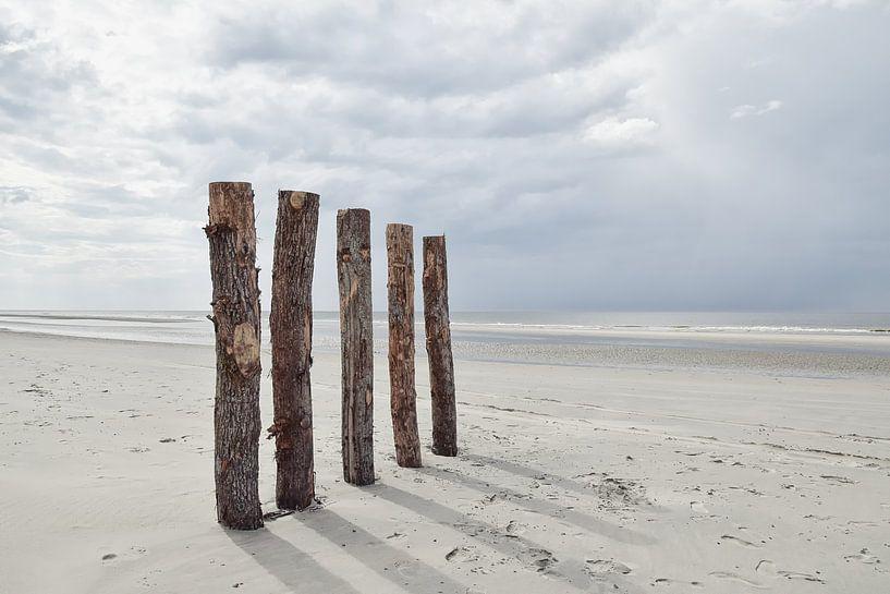Pile Heads à Renesse sur Zeeland op Foto