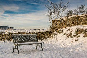 Winter von Heinz Grates