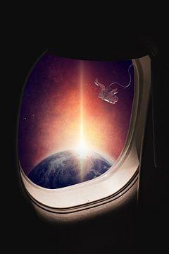 Voyage à travers l'Univers sur Felix Brönnimann