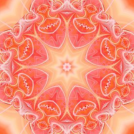 Mandala sterke aura van Christine Bässler