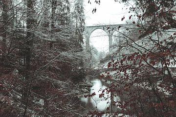 St. Galler Sitter Brücke  umgeben von Wald und Bäumen von Besa Art