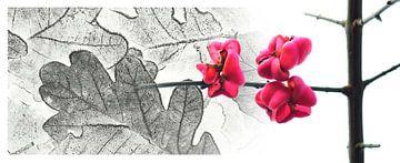 Herfstbladeren met roze bessen van Corinne Welp