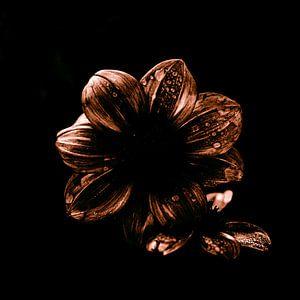 Golden dahlia van Yana Spiridonova