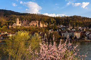 Frühling in Heidelberg von