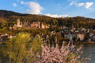 Printemps à Heidelberg sur Michael Valjak