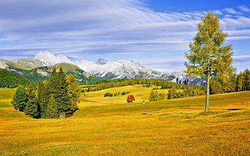 The Alpe di Siusi in Autumn van Gisela Scheffbuch