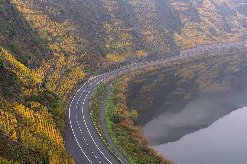 Yellow Wineyards van Jan Koppelaar