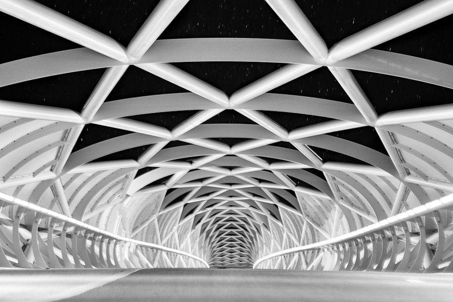 Fietsersbrug Barendrecht van Erik Noordhoek