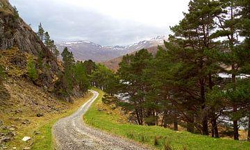 Glen Strathfarrar Schotland van Peter Schoo