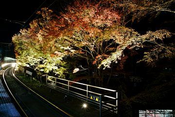 Eizan Railway,Kyoto von Stefan Havadi-Nagy