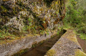 Waterweg sur Carola van Rooy