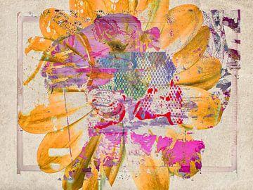 De Roze Kameel van Gabi Hampe