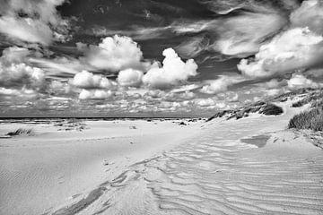 Niederländische Küstenlinie mit Dünen und Strand von eric van der eijk