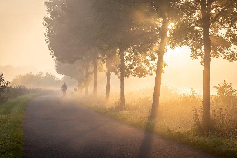 Fietser in de mist op het jaagpad langs de Leie in Lauwe - Menen, Belgie van Krist Hooghe