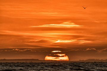 Sunset van Niels Barto