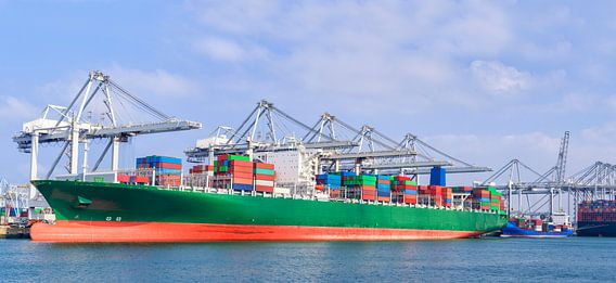 Container schip in de haven van Rotterdam van Sjoerd van der Wal