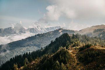 Oben auf dem Berg in Zell am See, Österreich (Alpen) von Yvette Baur