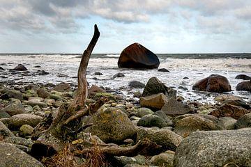 Een rots in de branding von Hanneke Luit