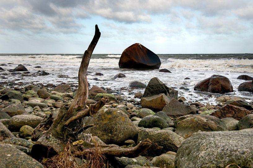 Een rots in de branding van Hanneke Luit