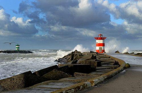 Storm aan zee. van