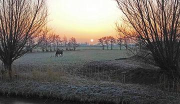 Winterse zonsopkomst van Rinke Velds