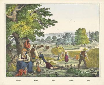 Oogst, Firma Joseph Scholz, 1829 - 1880