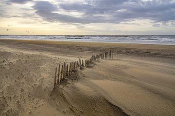 Wind, zee en zon van Dirk van Egmond