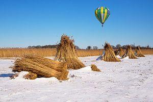 Naturpark der Weeribben und Heißluftballon