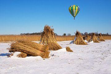 Natuurpark de Weeribben en luchtballon van Coby Bergsma