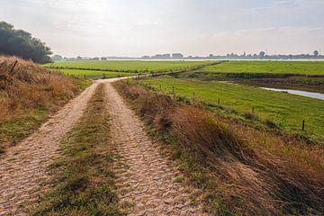 Landweg vanaf een dijk naar de rivier