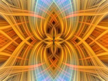 Lotus 8 van Jan van Reij