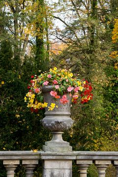 Fleurs renaissance sur Lavieren Photography