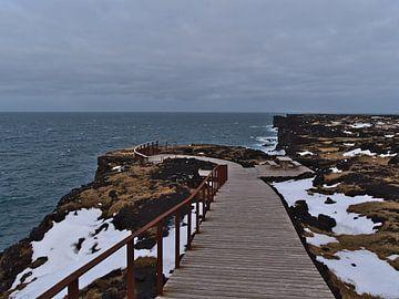 Über der Küste von Snæfellsnes von Timon Schneider