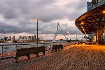 Uitzicht op de Erasmusbrug Rotterdam van Charlene van Koesveld
