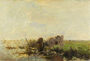 Vaches à l'étang (1880-1910), Willem Maris