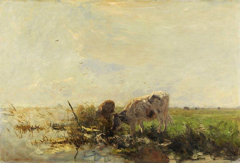 Vaches à l'étang (1880-1910), Willem Maris sur Atelier Liesjes