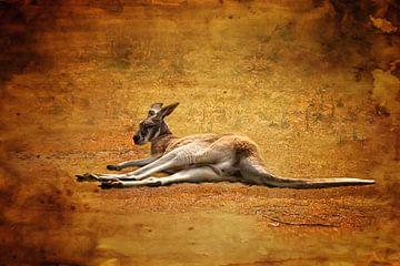 Kangaroo van Petra Voß