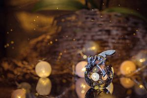Magische engel met kristallen bol