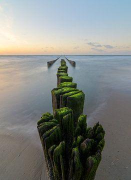 Beach at Westenschouwen in Zeeland. sur Jos Pannekoek