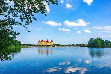 Schloss Moritzburg bei Dresden von Ullrich Gnoth