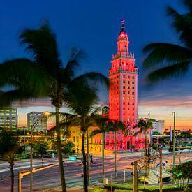 Miami Skyline van Mark den Hartog