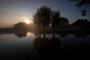 Drie bomen aan Dwarsgracht, Giethoorn