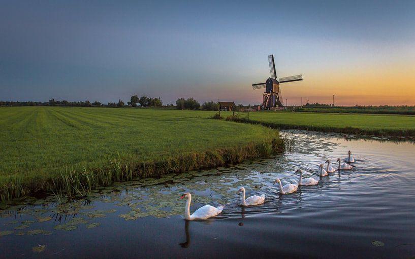 Hollands plaatje van Richard Reuser