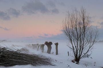 Voskuilen in Winterse Tooi.  van Willem van Leuveren Fotografie