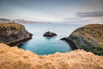 Bijzondere kustlijn in IJsland von Marcel Alsemgeest
