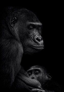 Gorilla vrouw met jong van Ron Meijer